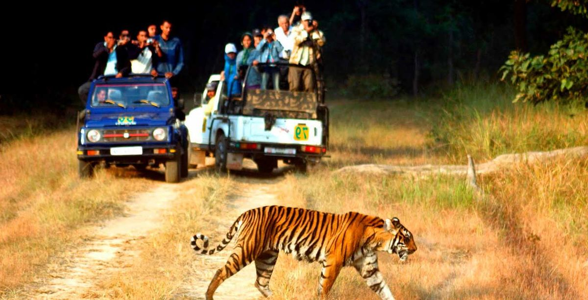 Jim-Corbett-National-Park.jpg